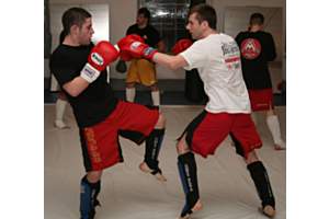 Shin Pads for Martial Arts
