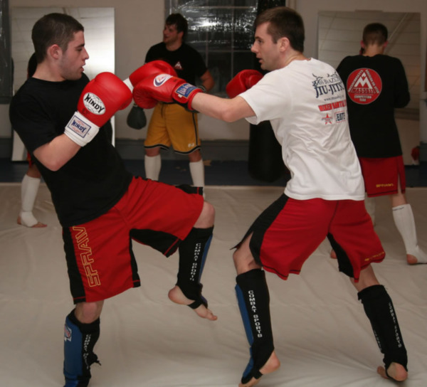 Three Reasons to Wear Shin Pads for Martial Arts